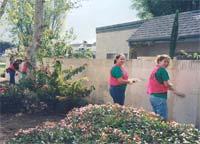 Photo of Project GO Volunteers