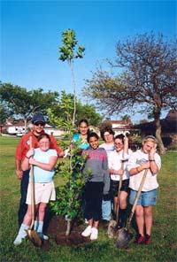 Photo of the Community Planting a Tree