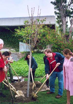 Photo of the the Community Planting a Tree
