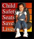 Safety Seats Save Lives Logo