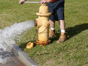 Photo of a Fire Hydrant