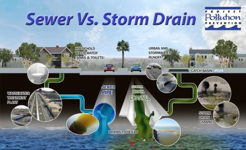 Sewer Vs. Storm Drain Diagram