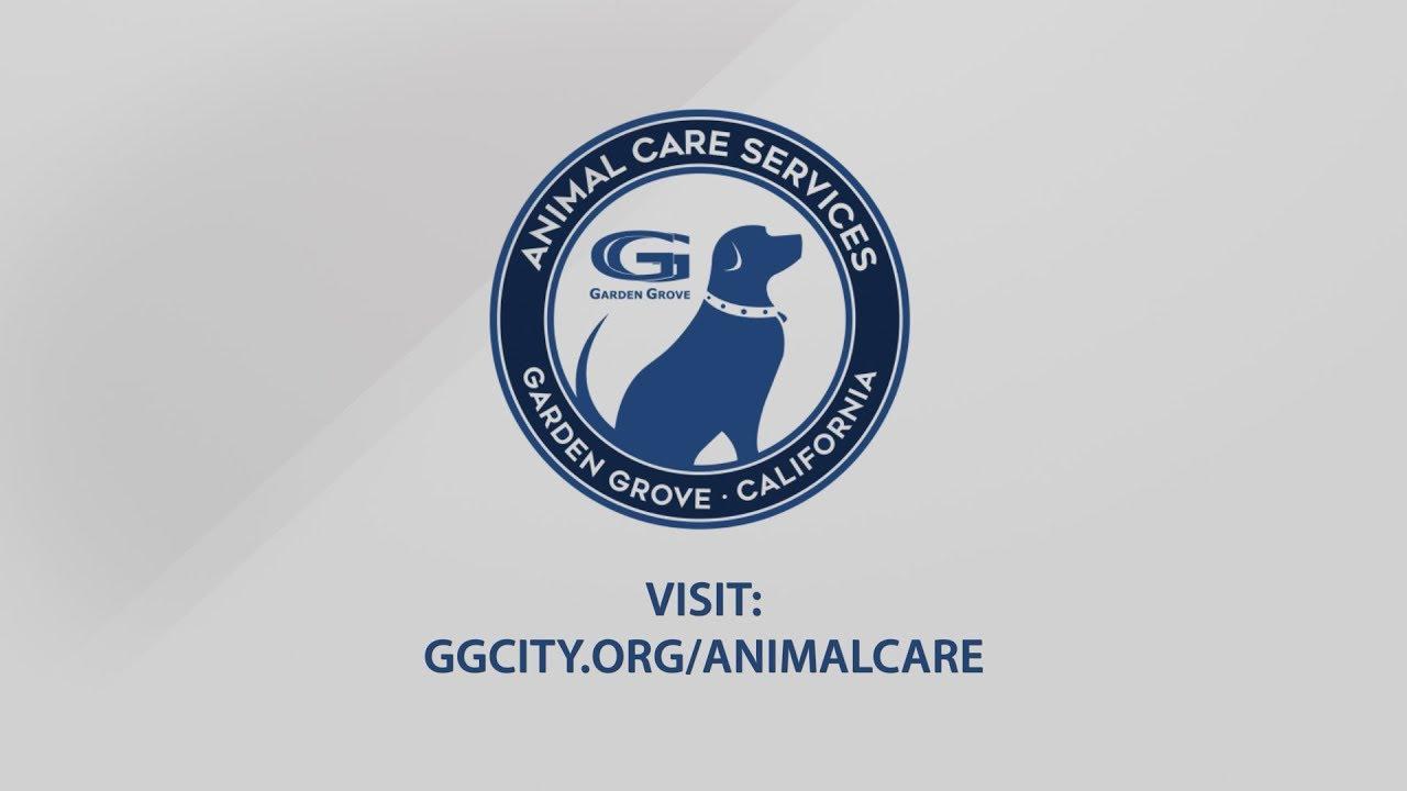 Bon Garden Grove Animal Care Serving You